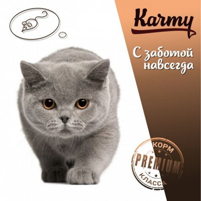 Деревенские лакомства - Ваш питомец будет признателен! — Karmy для британских короткошерстных кошек! — Корма