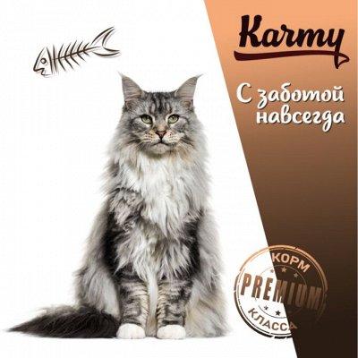 Деревенские лакомства - Ваш питомец будет признателен! — Karmy Корм для кошек породы Мэйнкун! — Корма