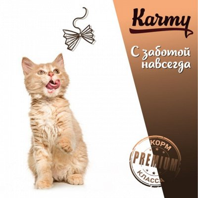 Деревенские лакомства - Ваш питомец будет признателен! — KITTEN для котят, беременных  и кормящих  — Корма
