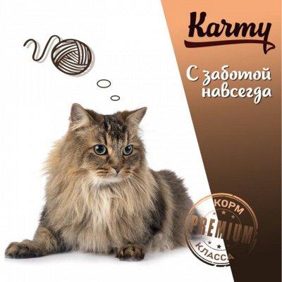 Деревенские лакомства - Ваш питомец будет признателен! — SPECIALIZED корм для кошек различных пород — Корма