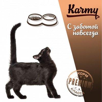 Деревенские лакомства - Ваш питомец будет признателен! — ADULT сухой корм для кошек — Корма