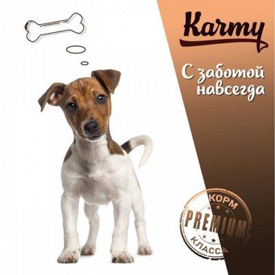 KARMY / ZооRING / ЛАКОМСТВА - 🐶 Счастливая жизнь питомца — STARTER корм для щенков, беременных и кормящих — Для собак