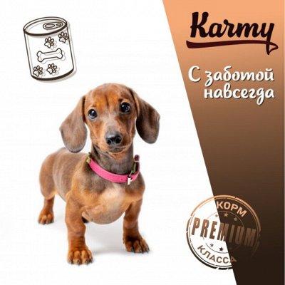 KARMY / ZооRING / ЛАКОМСТВА - 🐶 Счастливая жизнь питомца — MINI корм для собак мелких пород — Корма