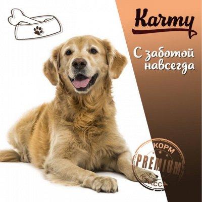 KARMY / ZооRING / ЛАКОМСТВА - 🐶 Счастливая жизнь питомца — MAXI корм для собак крупных пород — Корма