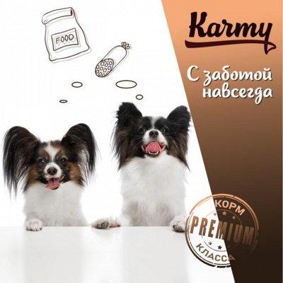 KARMY / ZооRING / ЛАКОМСТВА - 🐶 Счастливая жизнь питомца — Сухой корм Karmy для собак привередливых в питании — Корма
