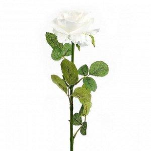 Искусственное растение Digby (70 см)
