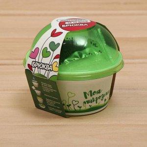 Набор для выращивания «Моя микрозелень», брюква