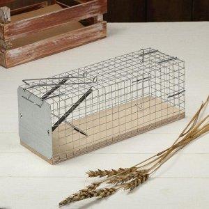 Крысоловка-ловушка (клетка), 28 ? 11 ? 9 см, металл