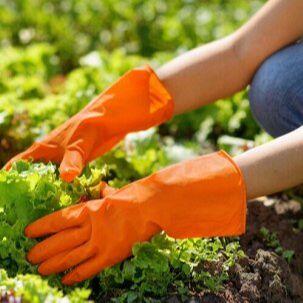 Лучший огород-дача. Подвязки, освещение, парники,  удобрения — Перчатки — Садовый инвентарь