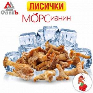 Лисички 0,5 кг МОРСианин
