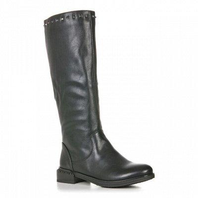 Mosso доступная обувь  - просто сказочные цены!!! — Женская Обувь EVITA - 2 — На каблуке