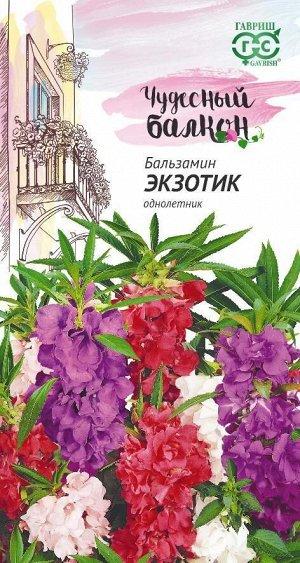 Бальзамин Уоллера Экзотик карлик 0,1гр Гавриш/ЦВ