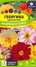Георгина Махровая Смесь Окрасок 0,2гр СА/ЦВ