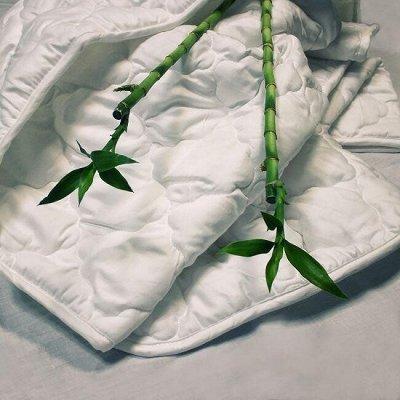 Бамбуковый Sale! -30% на классные подушки! — Бамбук ЭКО — Спальня и гостиная