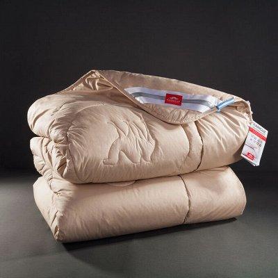"""Бамбуковый Sale! -30% на классные подушки! — Премиум """"Noil Camelus"""" верблюжий пух — Спальня и гостиная"""