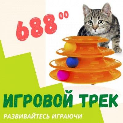 Деревенские лакомства - Ваш питомец будет признателен! — Игровой трек для кошек — Для кошек