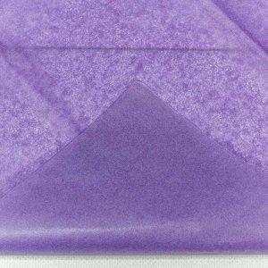 0001337/12 Бумага тишью 50*66 см сиреневый (10 листов в упаковке) 1/250