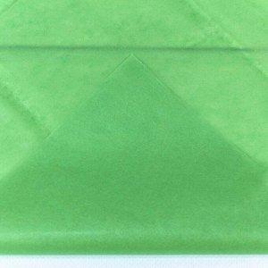 0001337/25 Бумага тишью 50*66 см светло-зеленый (10 листов в упаковке) 1/250