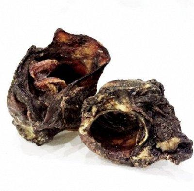 Рога оленя, лакомства, лососевое масло для собак — Акция! Цена снижена