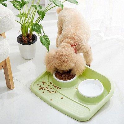 KARMY / ZооRING / ЛАКОМСТВА - 🐶 Счастливая жизнь питомца — ХИТ! Пластиковый поднос с мисками  — Миски и поилки для собак