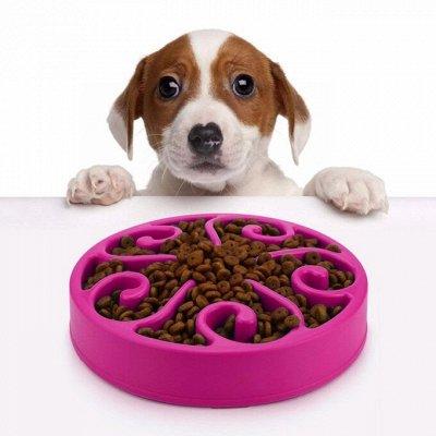 KARMY / ZооRING / ЛАКОМСТВА - 🐶 Счастливая жизнь питомца — НОВИНКА! Интерактивные миски для собак — Миски и поилки для собак