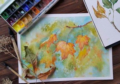 Art Идея. Вся палитра красок и товаров для творчества — Акварельные краски — Краски