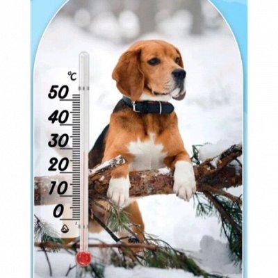🍅🍆Для Сада и Огорода🍒🍋 Отдыха и Уборки🍖Есть в Наличии! — Термометры, термогигрометры — Садовые инструменты