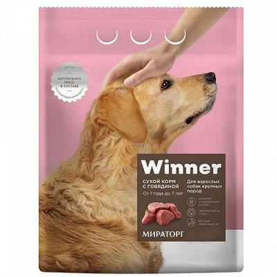 Все необходимое для любимых питомцев - очень много новинок! — Корма Winner для собак — Для собак