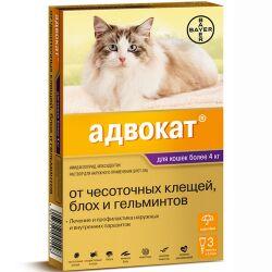 Все необходимое для любимых питомцев - очень много новинок! — От блох и клещей — Для кошек