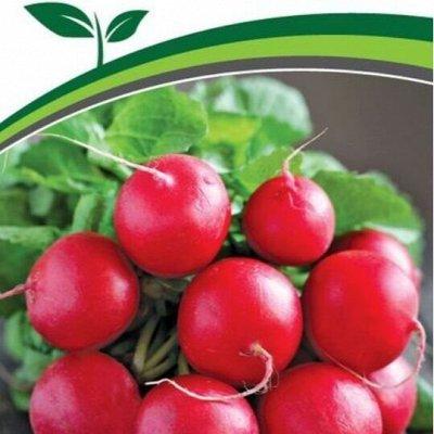 Семена Партнер и Семко. Пристрой. Овощи, зелень, лук, цветы — Свекла, морковь, редиска — Семена овощей