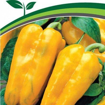 Семена Партнер и Семко. Пристрой. Овощи, зелень, лук, цветы — Перцы, баклажаны — Семена овощей