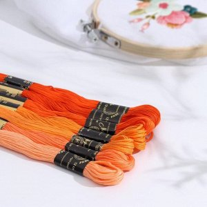 Набор ниток мулине «Цветик-Семицветик», 10 ± 1 м, 7 шт, цвет оранжевый спектр
