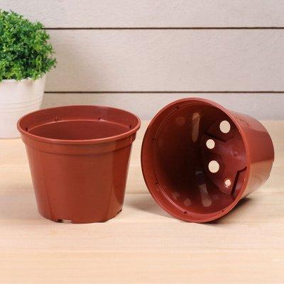 Современный сад: удобрения, инструмент, семена