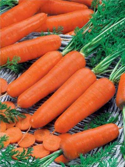 Первые семена. С нами сажает вся страна! — Морковь — Семена овощей