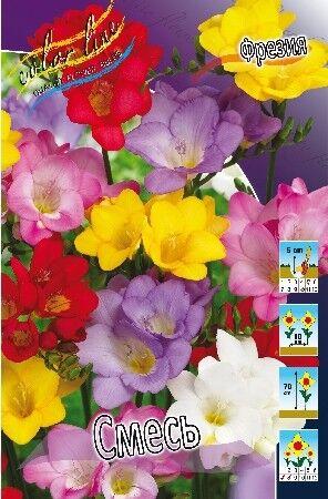 Новинки Плодовые саженцы двухлетки! — Корни, луковицы — Декоративноцветущие
