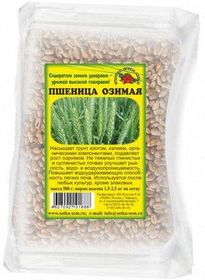 Пшеница озимая 200гр (1уп/50шт) Сидерат