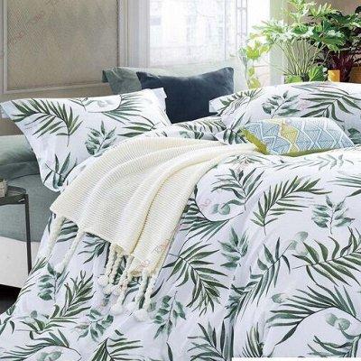 ОГОГО Какой Выбор постельного белья. Красивые расцветки — Постельное белье Полутороспальное   . — Полутороспальные комплекты