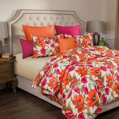 ОГОГО Какой Выбор постельного белья. Красивые расцветки — Пододеяльники Двуспальные — Наволочки