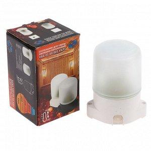 Светильник НББ 01-60-001 УХЛ1, E27, 60 Вт, 220 В, IP65, до +125°, белый
