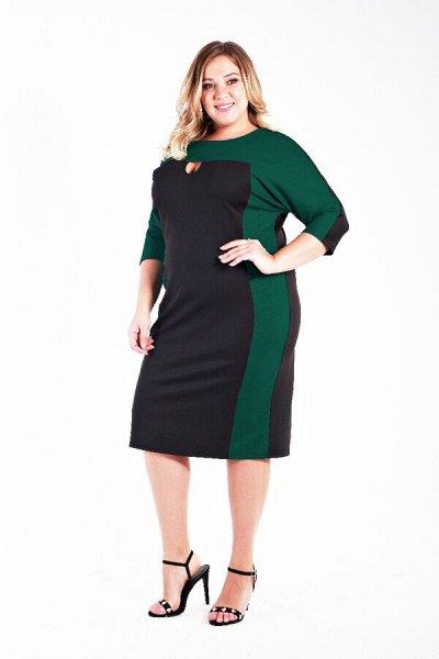 LaTe одежда для пышных модниц! До 84 размера — распродажа — Платья