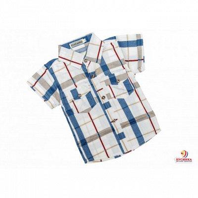 👚Детская одежда от 100 руб. Крутые, яркие новинки — Рубашки — Рубашки