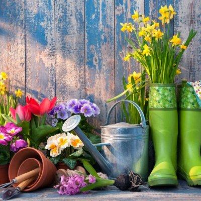 2000 видов семян для посадки! Подкормки, удобрения — Календарь посева семян