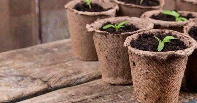 Полезные мелочи! Садоводам и огородникам!  — Садовые приспособления — Садовый инвентарь