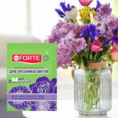 Бона Форте! Для тех, кто любит растения🌺 — Средства для срезанных растений — Удобрения и грунт