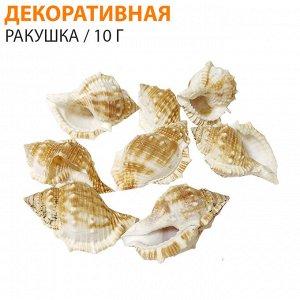 Декоративная ракушка  / 1 упаковка 10 г