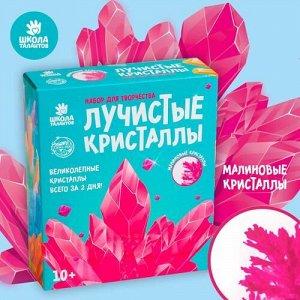"""Набор для творчества """"Лучистые кристаллы"""" цв.малиновый"""