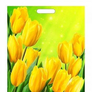 """Пакет полиэтиленовый с вырубной ручкой """"Солнечные тюльпаны"""" 45*38 см."""