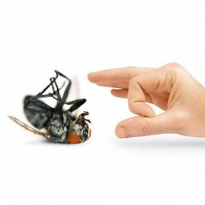 🆘 Травим тараканов, комаров, блох, садовых вредителей и др — Средства от мух — Средства от тараканов, клопов, грызунов и насекомых