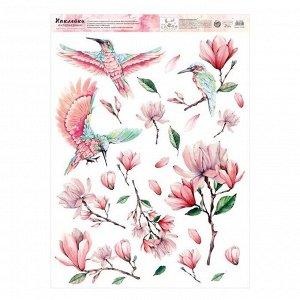 Наклейка виниловая «Колибри». интерьерная.50 х 70 см