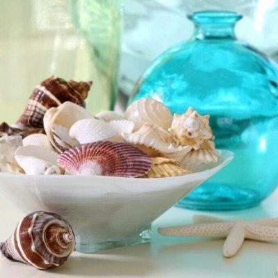 Домашний уют и комфорт💒 Распродажа ковровых дорожек — Декоративные ракушки/камни  — Для дома